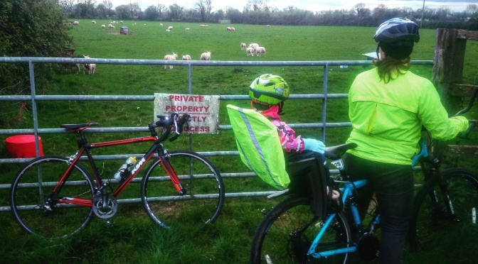 I Hate Cyclists!