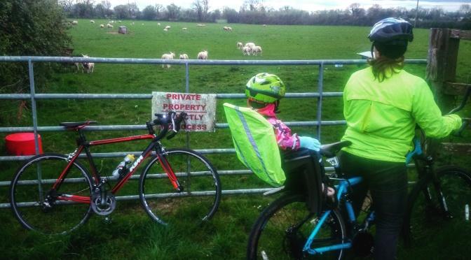 I Hate Cyclists!